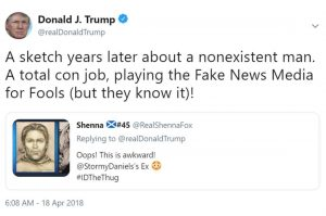 Trumps-Stormy-Tweet-wasnt-defamation-300x199