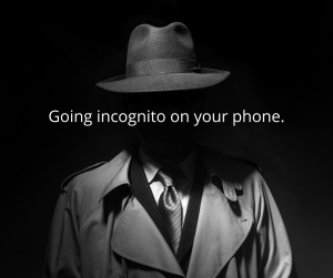 https://www.businessattorneychicago.com/files/2020/09/Going-incognito-on-your-phone.-1-300x251.png