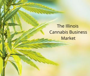 The-Illinois-Cannabis-Business-Market-300x251